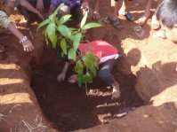 The_students_who_planting_the_tree